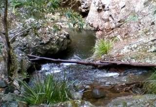 Bedrock Falls Farm Stay