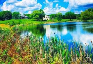 Lakeside Campsite Suburbs