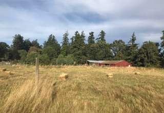 B&B Farm