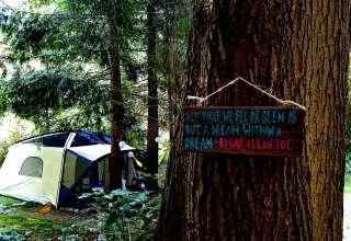 Under The Cedars Retreat