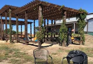 Walker Honey Farm and Dancing Bee Winery Vineyard