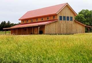 SpringLake Angus Ranch