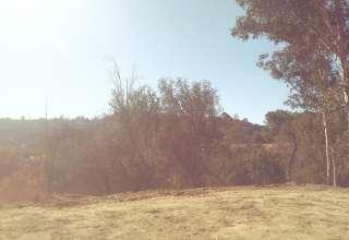 MB.'s Land