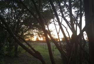 Briers Primitive Camping