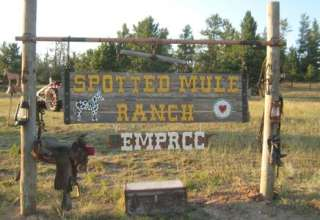 Lemke's Spotted Mule Ranch