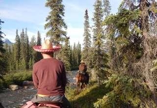 Wilderness Homestead
