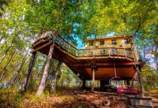 Treehouses, Off the Grid!