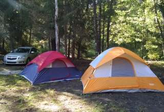 Rustic Nature Camp in Forrest