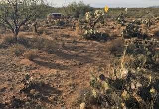 Diamond Bell Ranch Escape