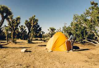 Camp Juniper