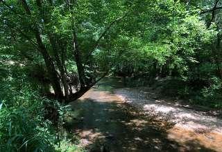 The Oasis at Harmon Creek Farms
