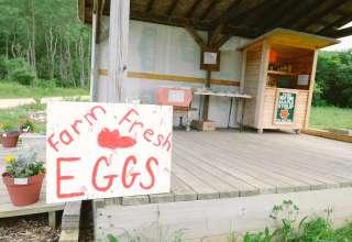 Jara Farms