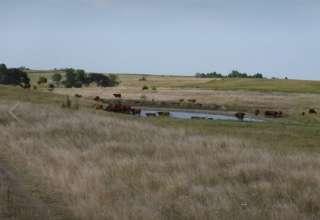 Andersen's Lazy Farm Paradise