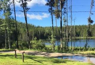 Old Black Lake Campground