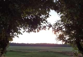 Walnut Valley Realm