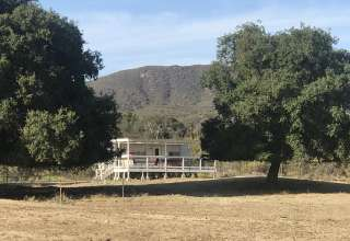 Pasture Paradise Basecamp