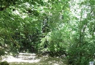 Camp Nauvoo