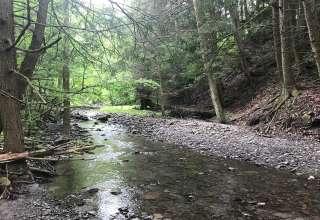 Wild Cherry Creek