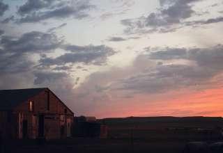 Quiet Cattle Ranch