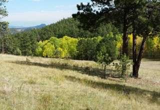 Bear Mountain DGC