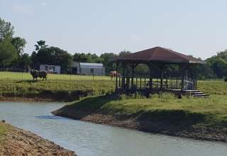 Zen Camp
