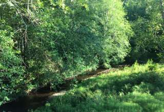 Creekside Paradise