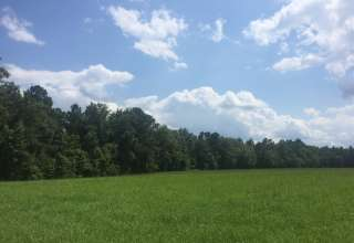 Savanna Creek Farms