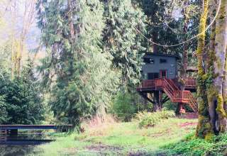 Larkin Place Treehouse
