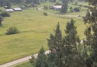 Wyoming Black Hills Beauty!