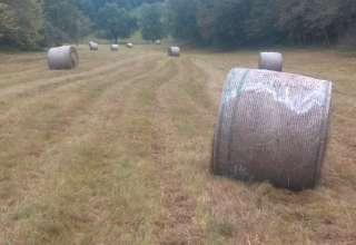 Rocky Run Farm Campsites