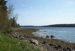 Elmer's Cove