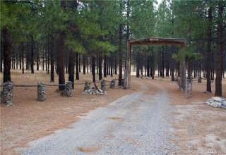 R&R cabin and camp