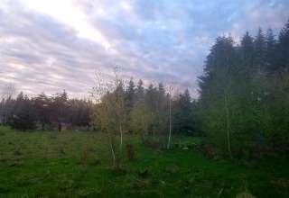 Moonlit Meadow Cooperative