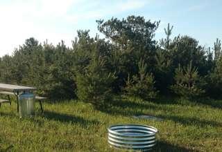 Pine Meadows