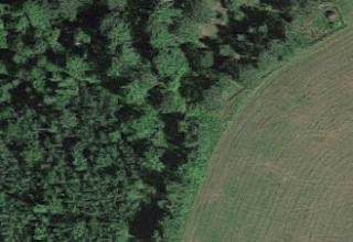 Rachel N.'s Land