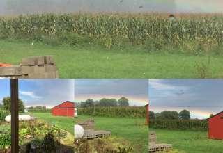 Karen N.'s Land