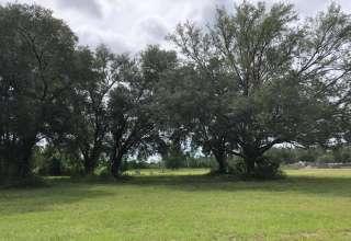 Jeffrey B.'s Land