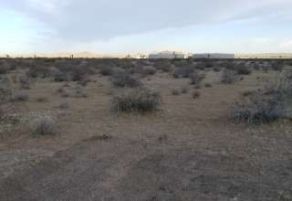 Our Desert Oasis