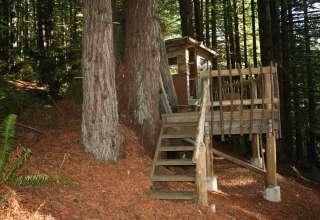 The Redwood Stumphouse