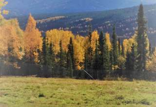The Heart of Fairbanks