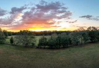 West Light Farm