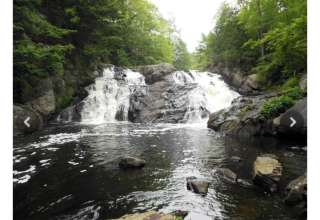 Daylily Farm & Waterfalls
