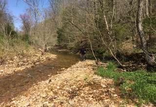 Bluff Creek Farms