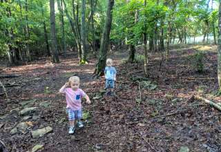 Deer Forest Hideaways