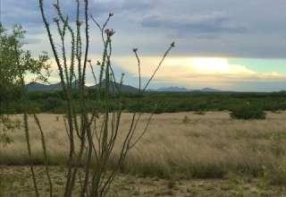 Karen Hesselbach F.'s Land