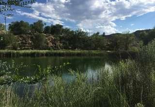 Natalie  B.'s Land