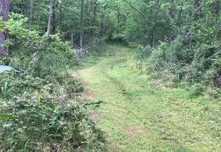 Sandra  P.'s Land