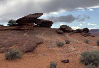 Omar R.'s Land
