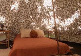 Coco Camp