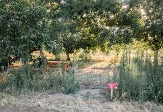 Cassie H.'s Land